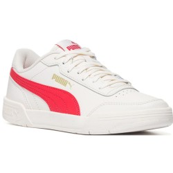 Puma caracal junior